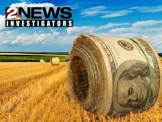 Farm Subsidies Investigation
