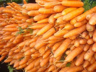 Lovin' Carrots!