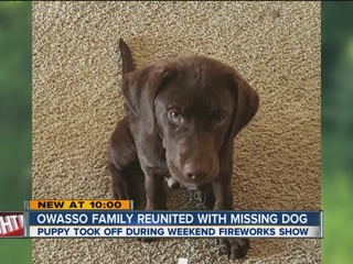 Man uses scent to reunite with missing dog