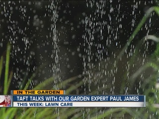 Paul James' summer lawn care tips