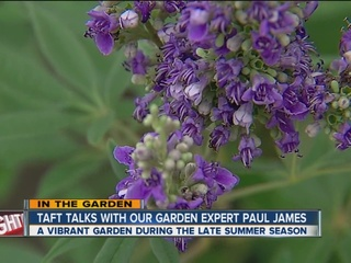 Paul James on adding late summer color