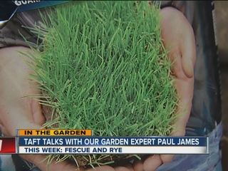 Paul James covers fescue and rye