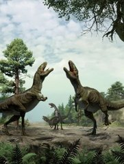 Dinosaurs used scratch marks as mating calls