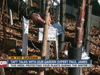 Paul James talks about