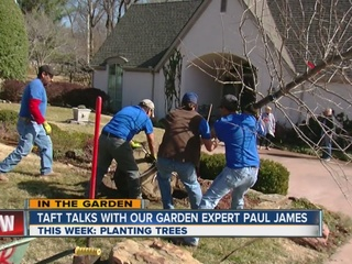 Paul James shows us how big trees are planted