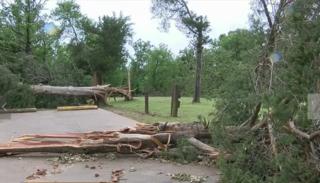 Tornado confirmed at Greenleaf State Park
