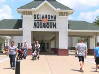 'Rocky' the beaver dies at Tulsa Aquarium