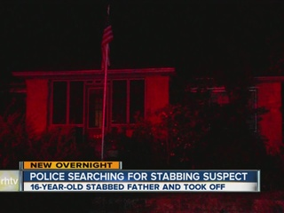 Teen accused of slashing father with ax