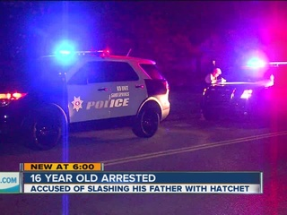PD: Teen arrested after slashing father with ax