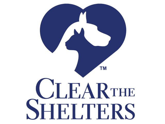 Clear the Shelters 2016 a major success; hundreds of ...