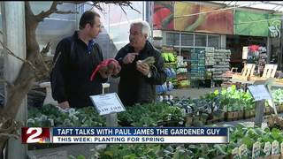Paul James: What to plant now!
