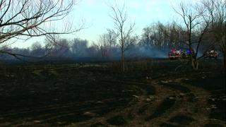 More than 400 acres burned in Coweta grass fire