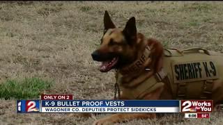 Sheriff K-9's get new bulletproof vests
