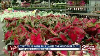 Paul James covers summer bulbs