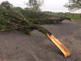 NWS confirms second EF-1 tornado in Mayes Co.
