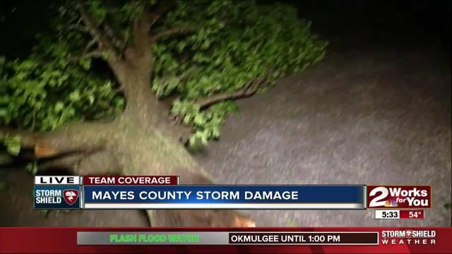 Thunderstorm causes damage in Adair