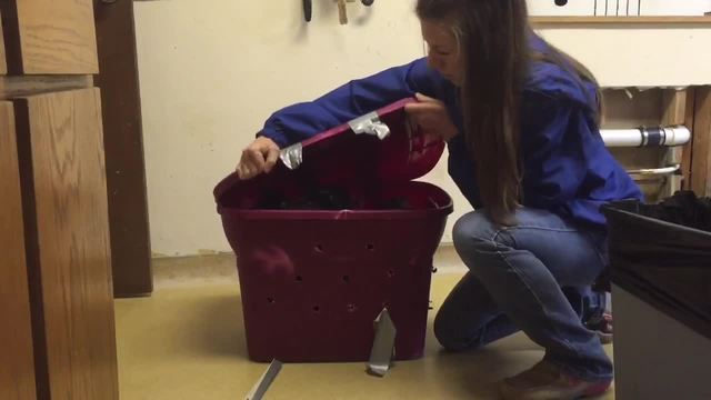 Duct-taped shut tub of puppies dropped off at Stilwell animal hospital