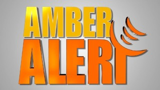 Amber Alert for missing 1-YO canceled