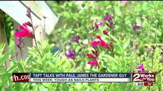 Paul James: