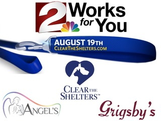 Adopt a pet and help clear the shelters Aug.19