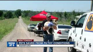 "Pets rescued from ""deplorable"" conditions"