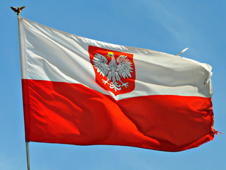 Eight people hospitalized in Poland after knife