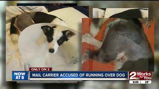 Mail carrier accused of rolling over dog
