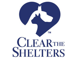 Clear the Shelters 2016 a major success