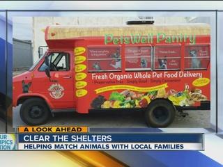 PetsWell Pantry talks adopting, organic pet meal