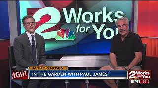 Paul James: Answers Viewer's Questions