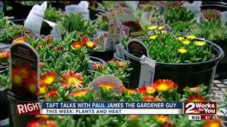 Paul James covers plants that love summer heat