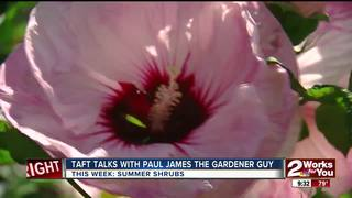 Paul James and summer shrubs that flower