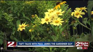 Paul James: Perennials to plant now!