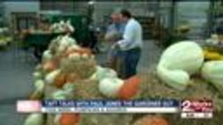 Paul James: Pumpkins and Gourds