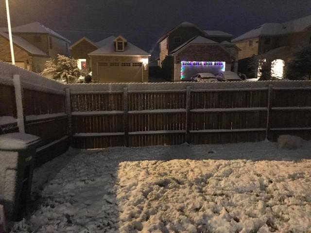 Texas Snow Storm: Pictures, Videos Show Snowfall In Houston, Corpus Christi, Others