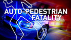 Officers investigate fatal auto-ped accident