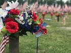 Flags line Floral Haven for Memorial Day