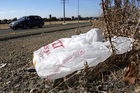 Official wants to bag single-use plastic bags