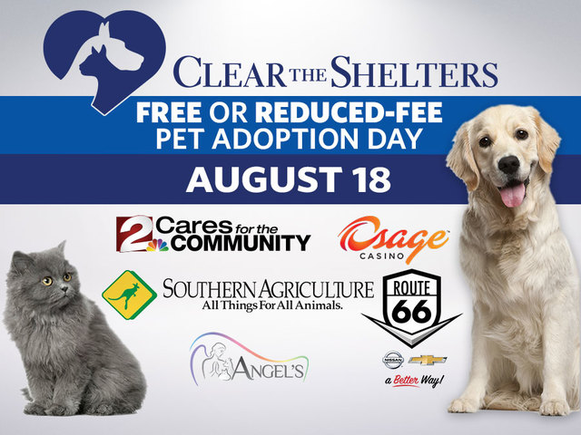 Adopt a pet and help clear the shelters Aug.18