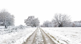 PHOTOS: November snow hits Green Country